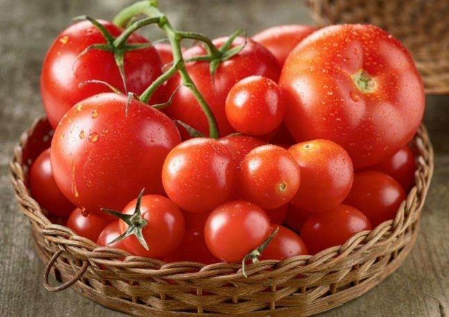 蔬菜生鲜配送西红柿